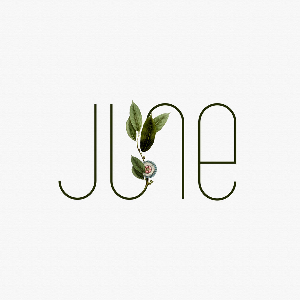 social media freebie | JUNE by Akula Kreative