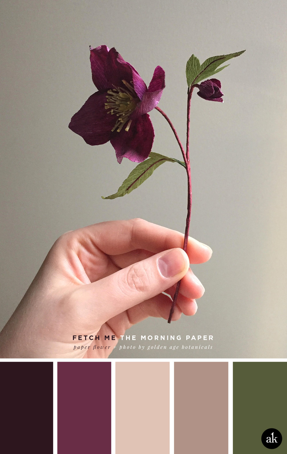 a purple-paper-flower-inspired color palette | purple, warm tones, green | photo + flower by Golden Age Botanicals