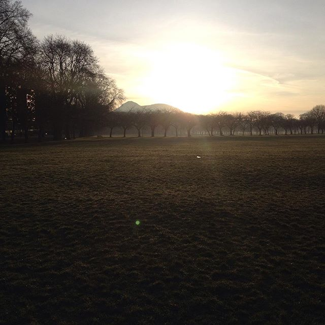 Great morning for some #plyometrics with the #edinburghuniversity Haries. #outdoorfitness #improveyourrunning