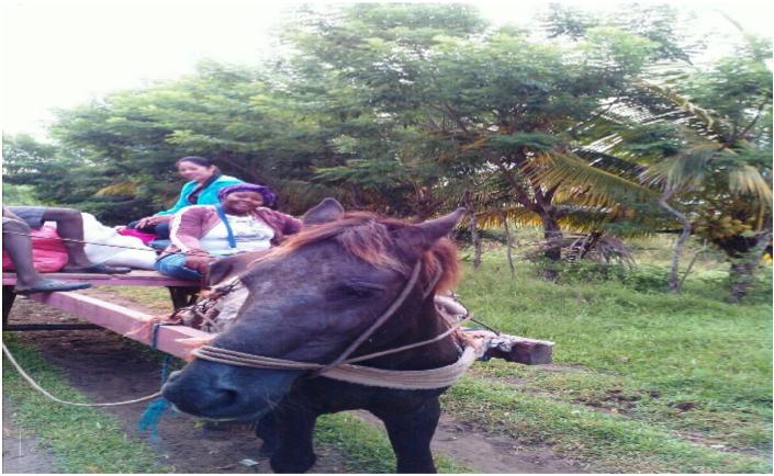 Transportándose tutora y asesora en la comunidad de Rio Tinto.