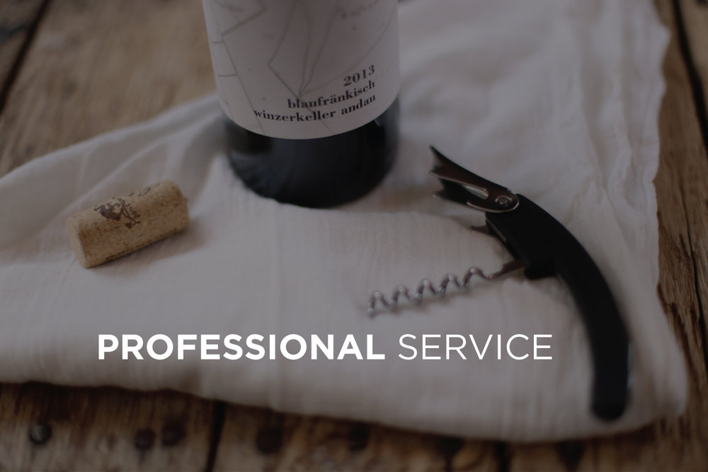 PROFESSIONAL-SERVICE.jpg