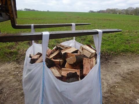 logs for sale at Dummer