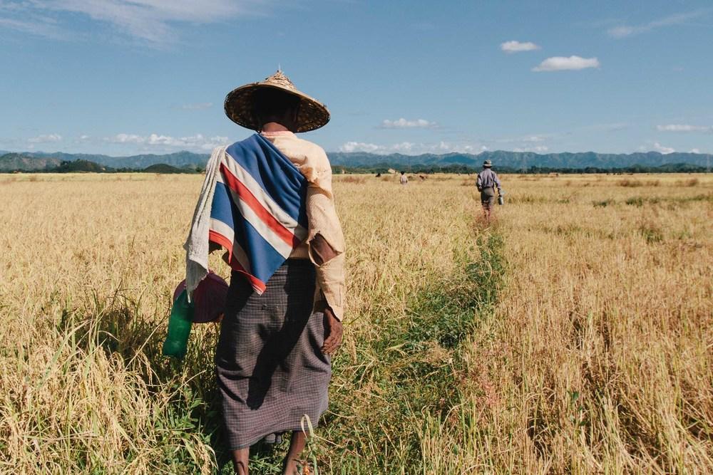 Tristan_Wheelock_Myanmar-6.jpg