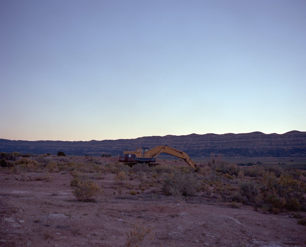 Crane at dusk outside of Escalante Utah. October, 2013.