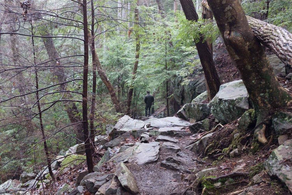 Climbing (3 of 75).jpg