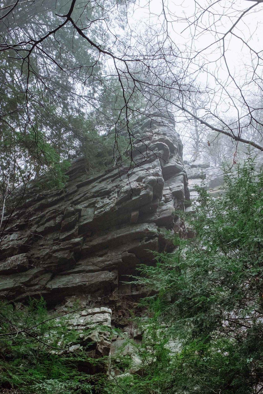 Climbing (12 of 75).jpg