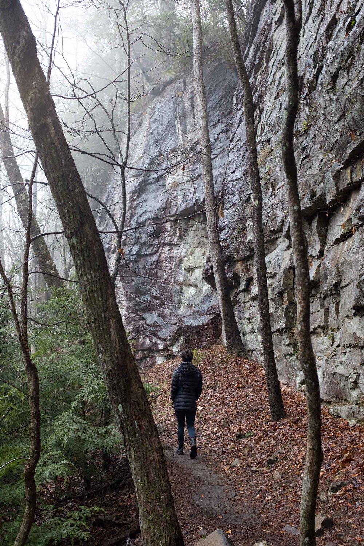 Climbing (13 of 75).jpg