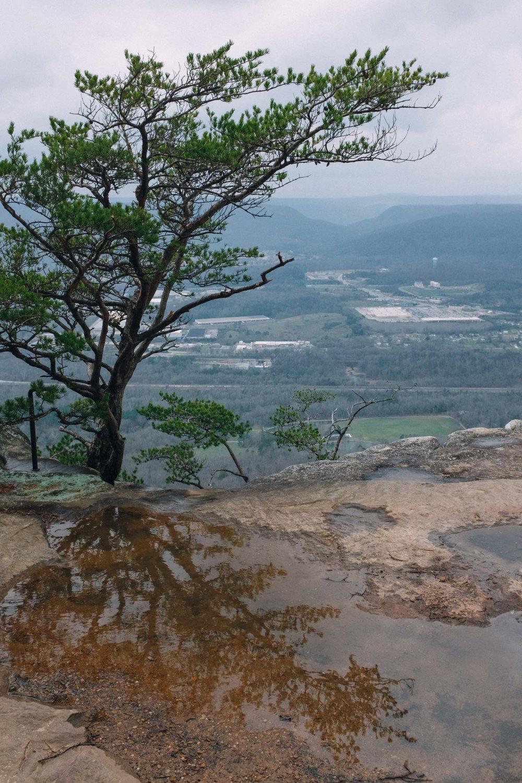 Climbing (19 of 75).jpg