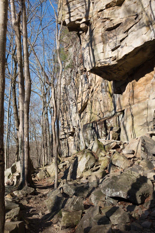 Climbing (35 of 75).jpg