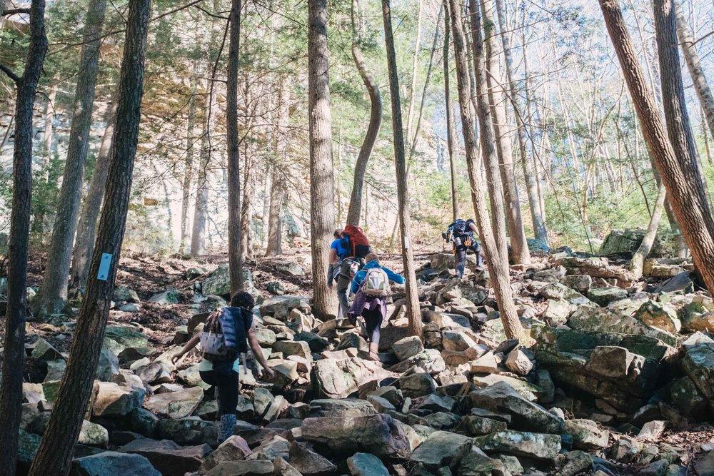 Climbing (57 of 75).jpg