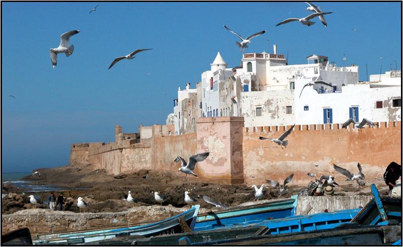 Essaouira_day_trip.jpg