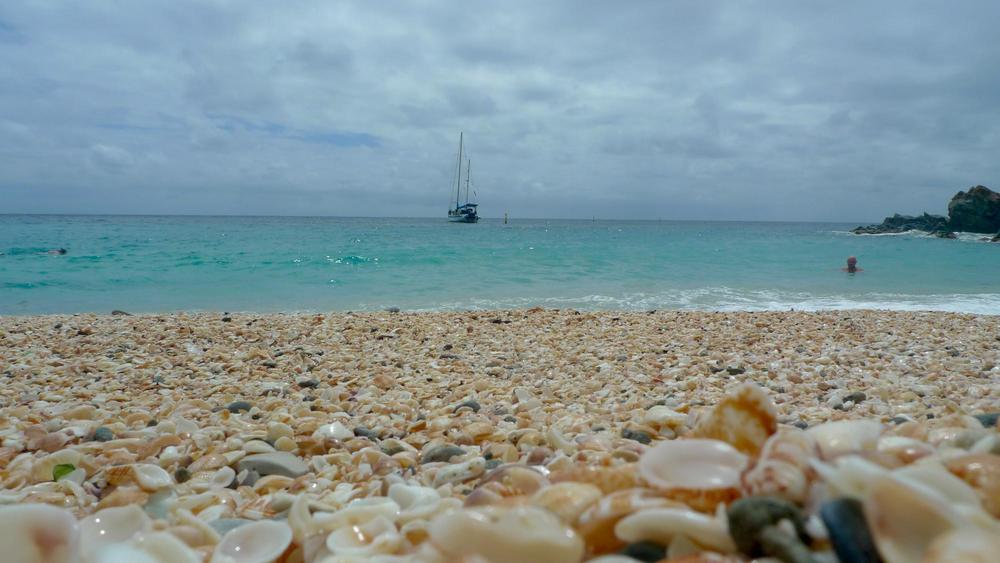 Shell Beach, Saint Barthelemy