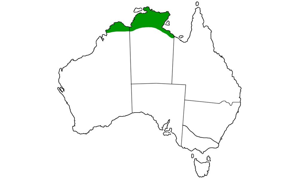 Morelia-spilota-variegata-range.jpg