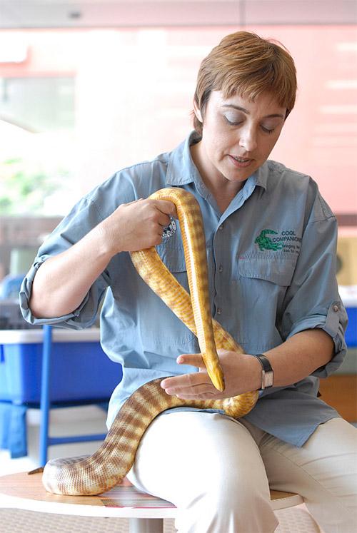 15-snake1.jpg