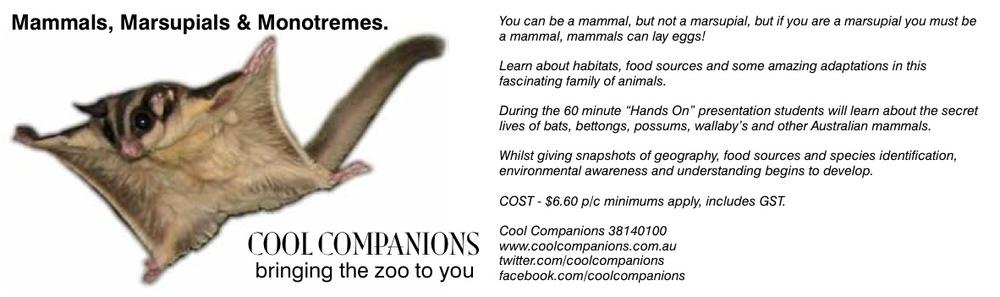 Mammals, Marsupials & Monostremes