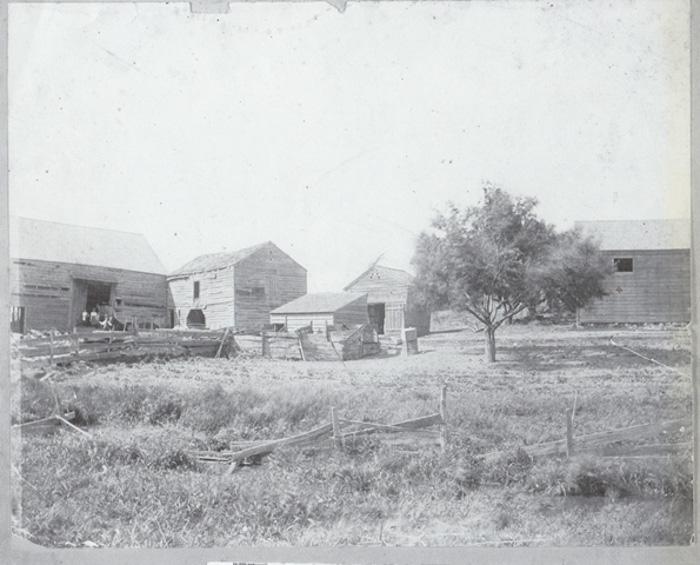 Farming-5.jpg