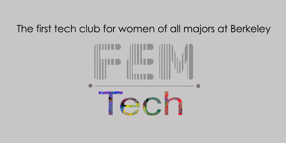 Workshop at FEMTech