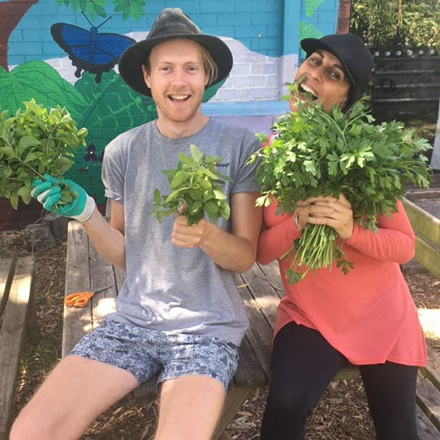Time to harvest! #genxchange #garden #mnc #parsley #whatdoyoumakewiththat #mojitos #sunshinecoast