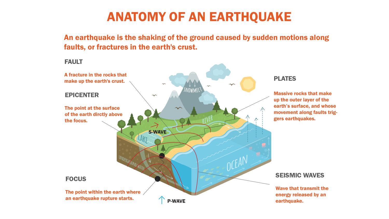 Seismic Detector — Dylan Zhang