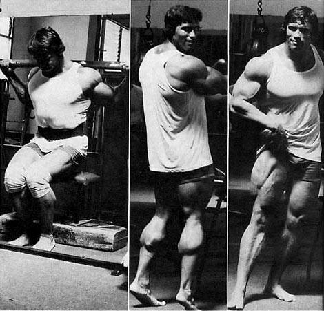 Arnold3.jpg