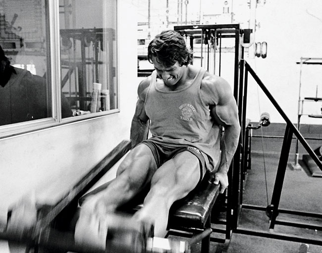 Arnold-Legs-Main.jpg