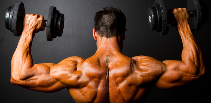 wide-strong-shoulders-muscle