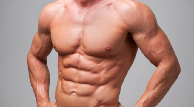 abs-muscle-ripped-torso