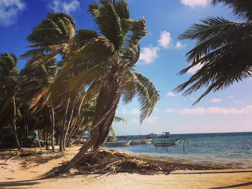 A glimpse of the shores of Caye Caulker - definitely a windy island!