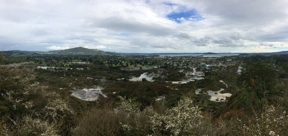 Views of Rotorua from Redwoods Forest Park. You can see the geyser steaming right in the middle!