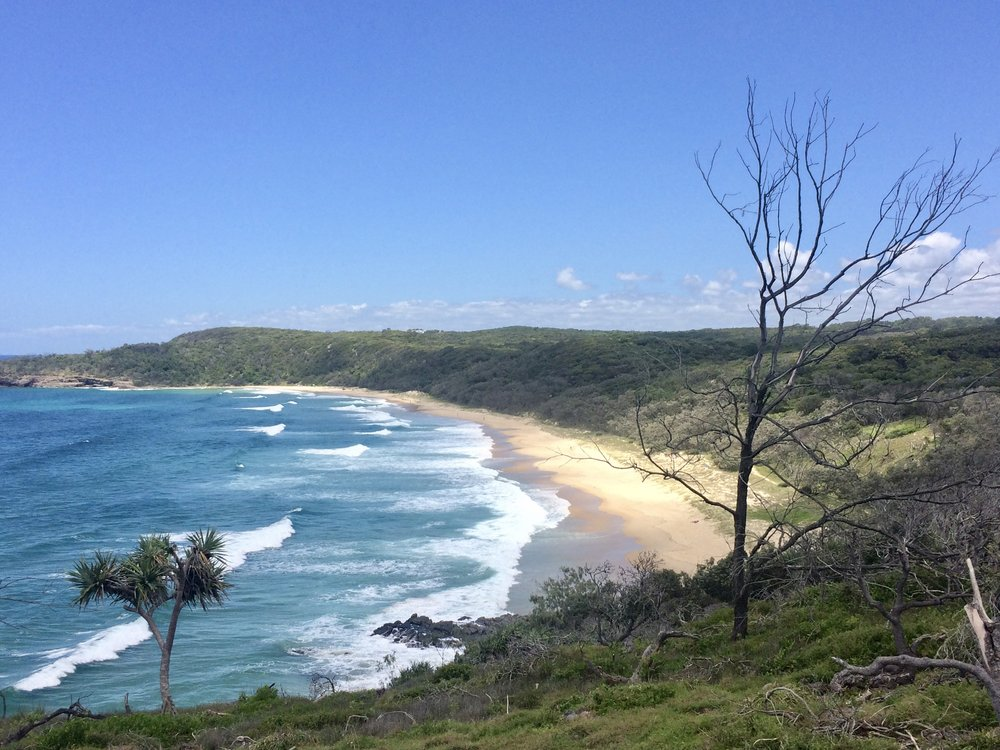 Stumbled upon the nudie beach in Noosa National Park, oops...