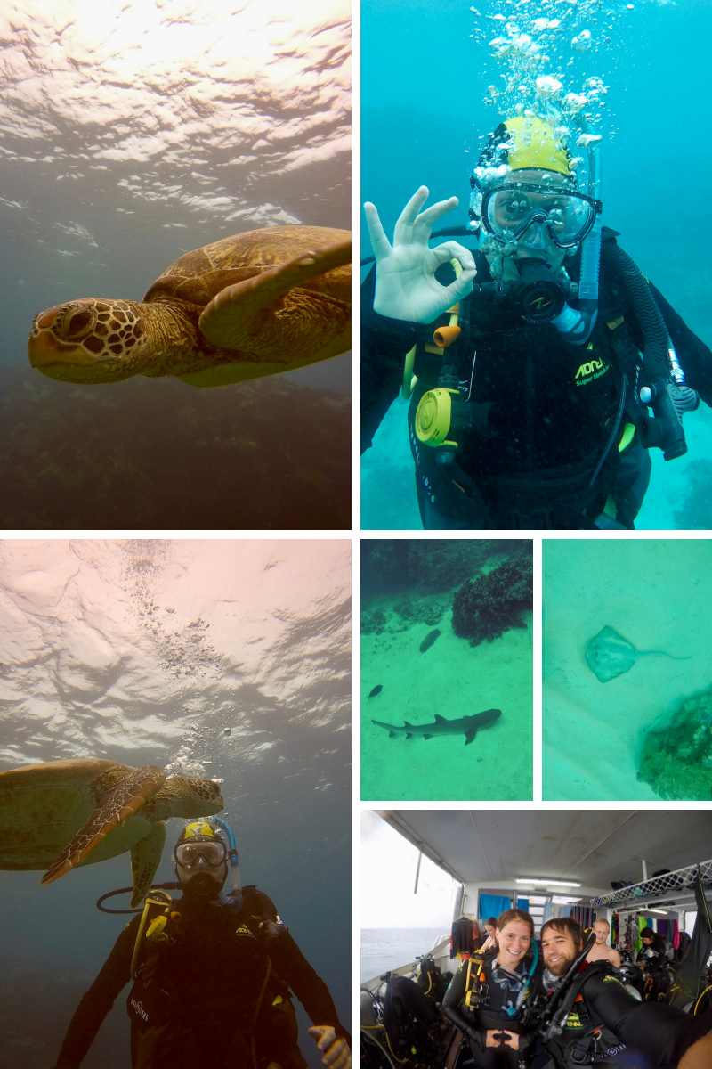 3 days, 9 dives - Open Water and Adventure Diver certification complete!