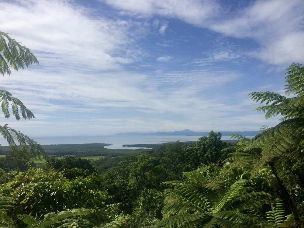 Lookout point from the Daintree.