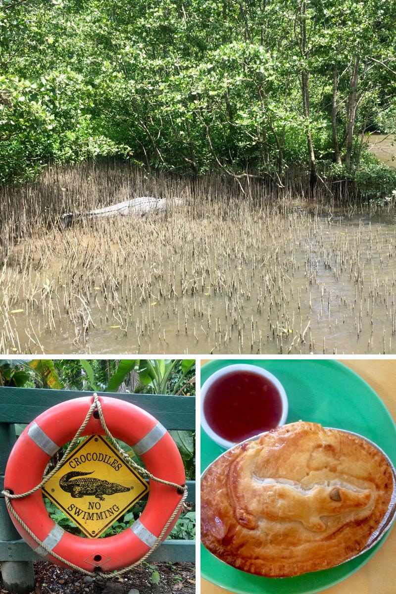 Crocodile country! Crocs, cros warnings and croc pie!