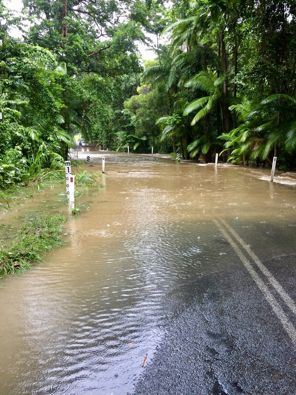 Flooded roadways on the way to Cape Tribulation.