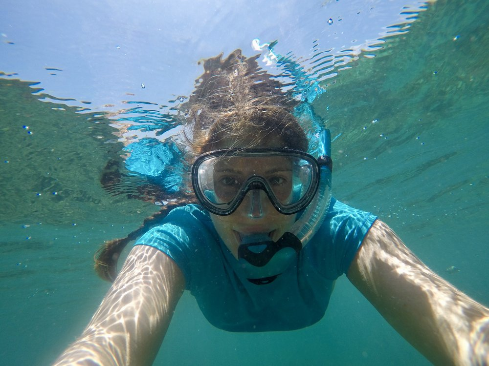 Private snorkel adventure in Koh Phi Phi.
