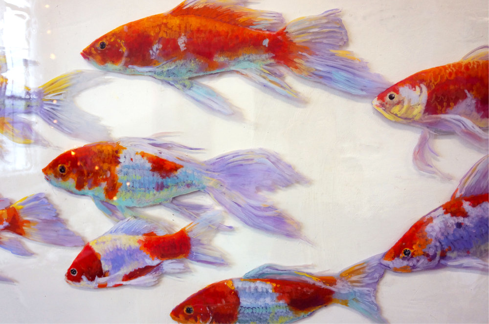 Koi Fish Love