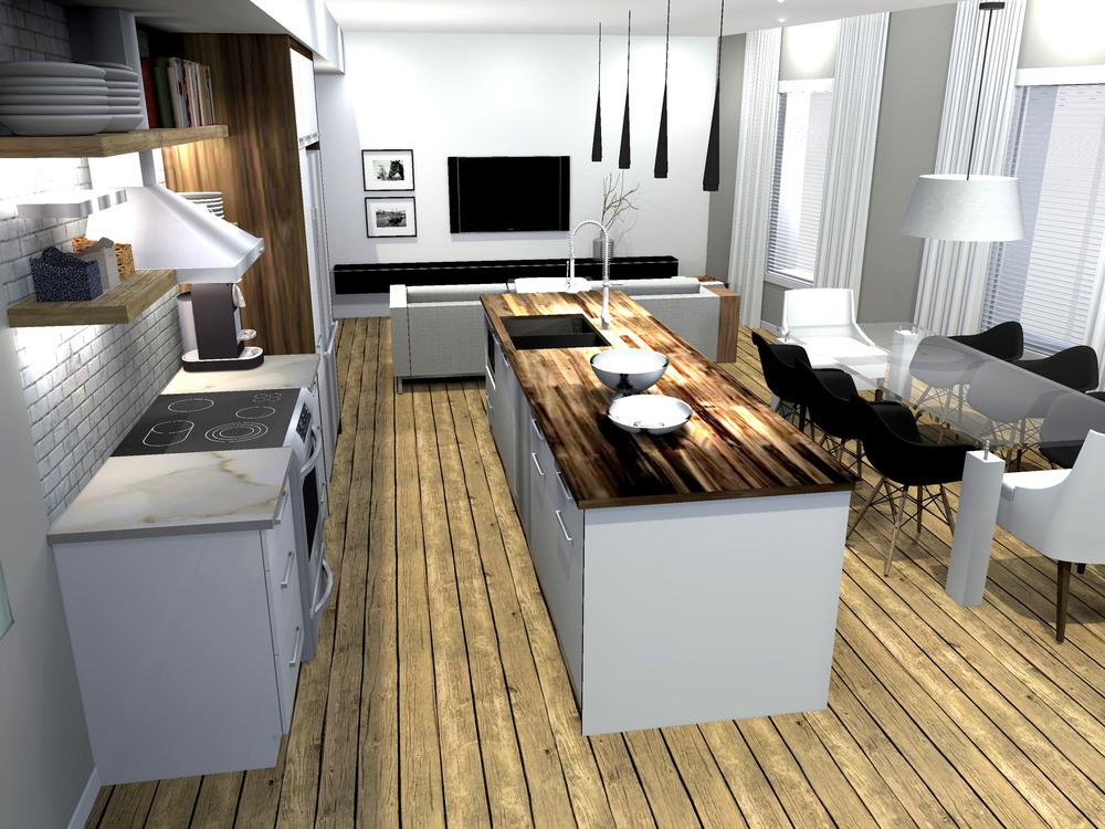 Cuisine salon vue 2d.jpg