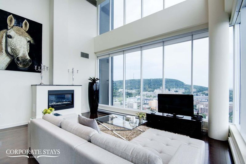 03.luxury_apartment_montreal_the_city_view[1].jpg