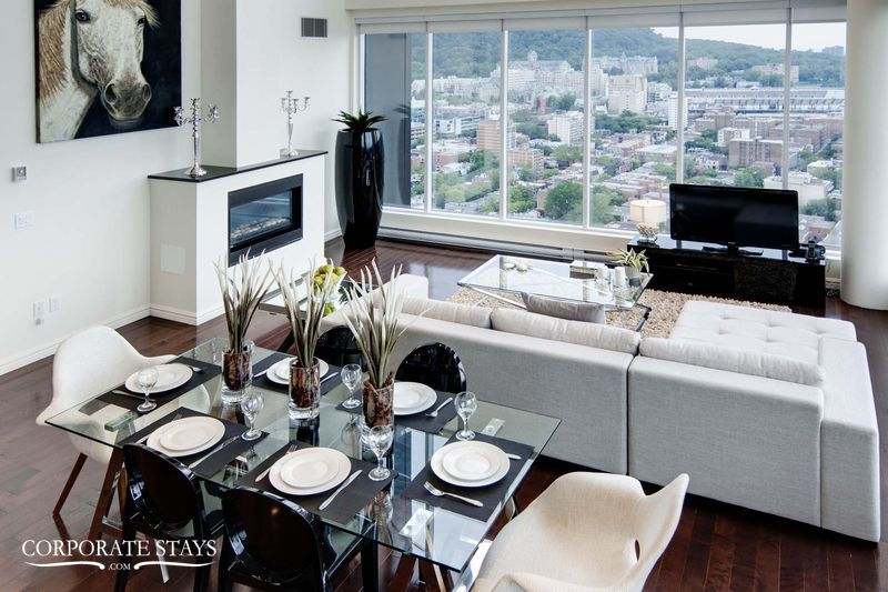 05.luxury_apartment_montreal_the_city_view[1].jpg