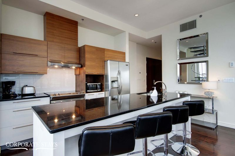 12.luxury_apartment_montreal_the_city_view[1].jpg