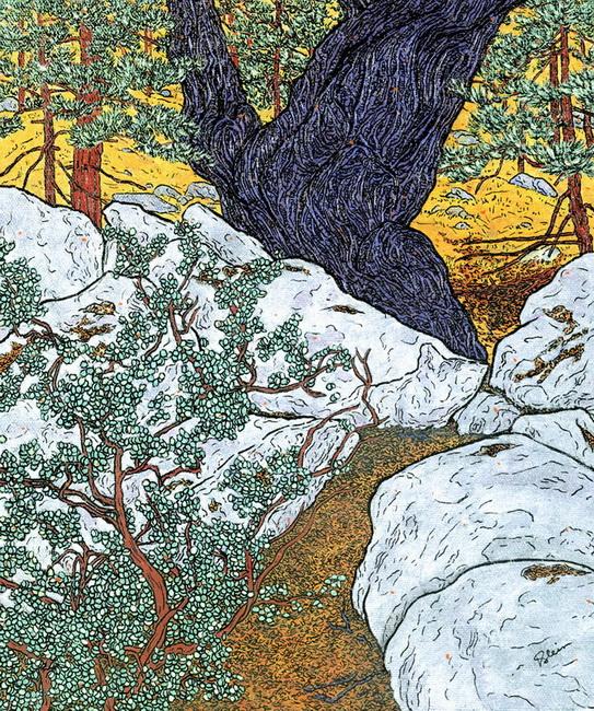 YR 26--Klein, Susan J., Ezra's Big  Black  Oak.jpg