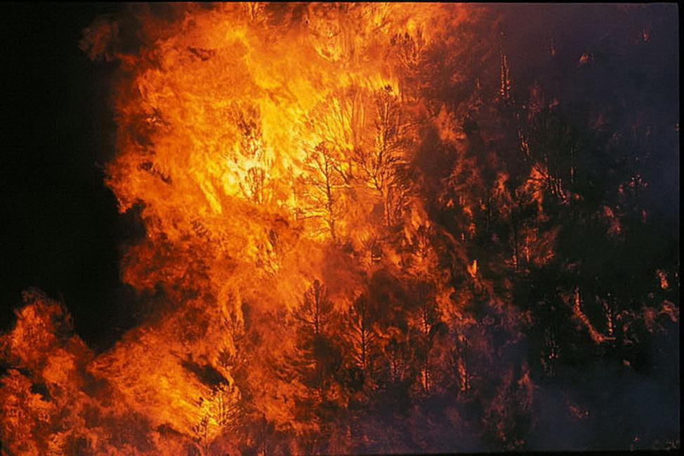 YR 16--Weller, John B (Fire).jpg
