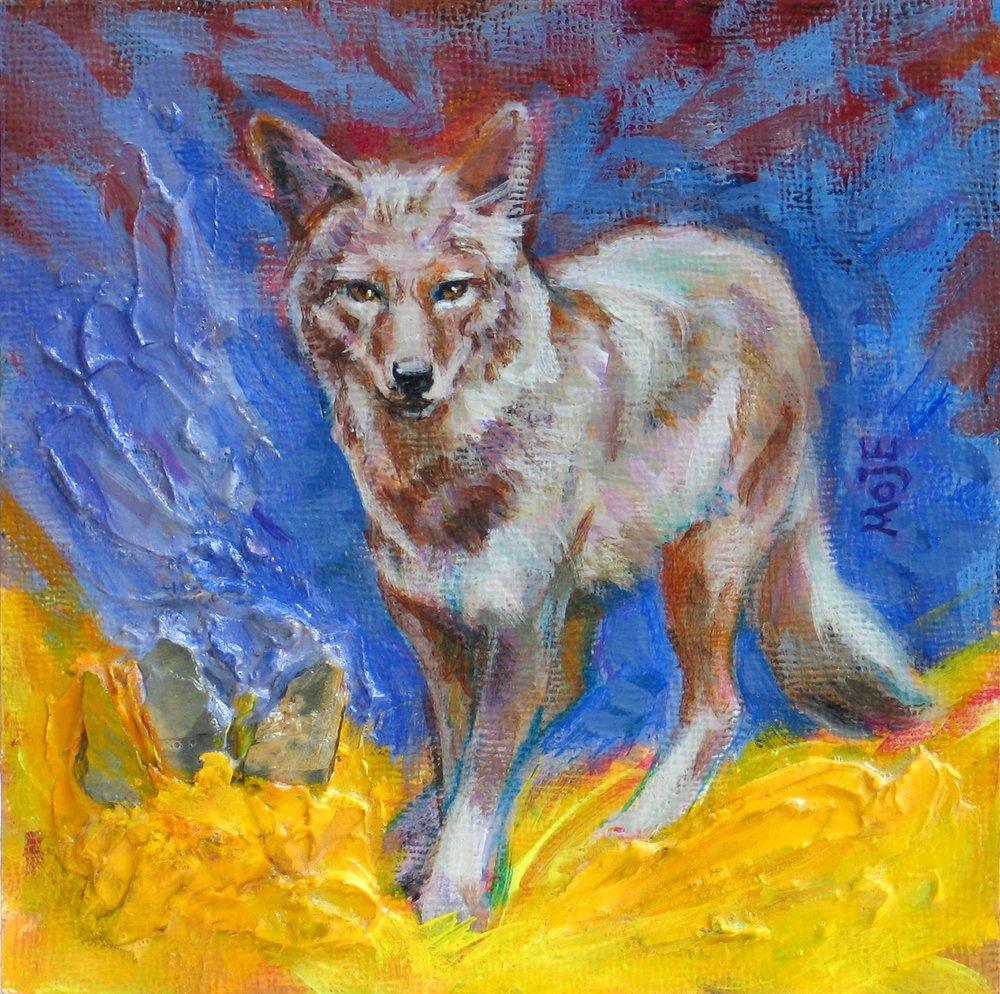 8689-coyote_into_yellow-1120201618-10551.jpg