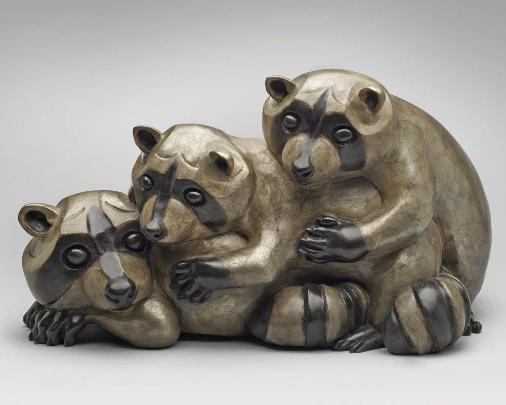 8689-raccoons-1120201613-11160.jpg