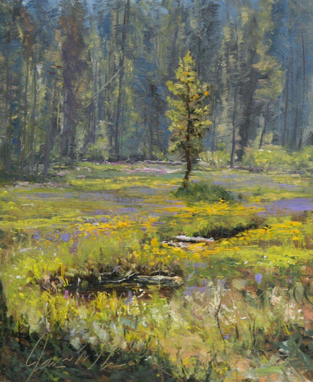 8689-summit_meadow_wildflowers-1120201623-1020.jpg