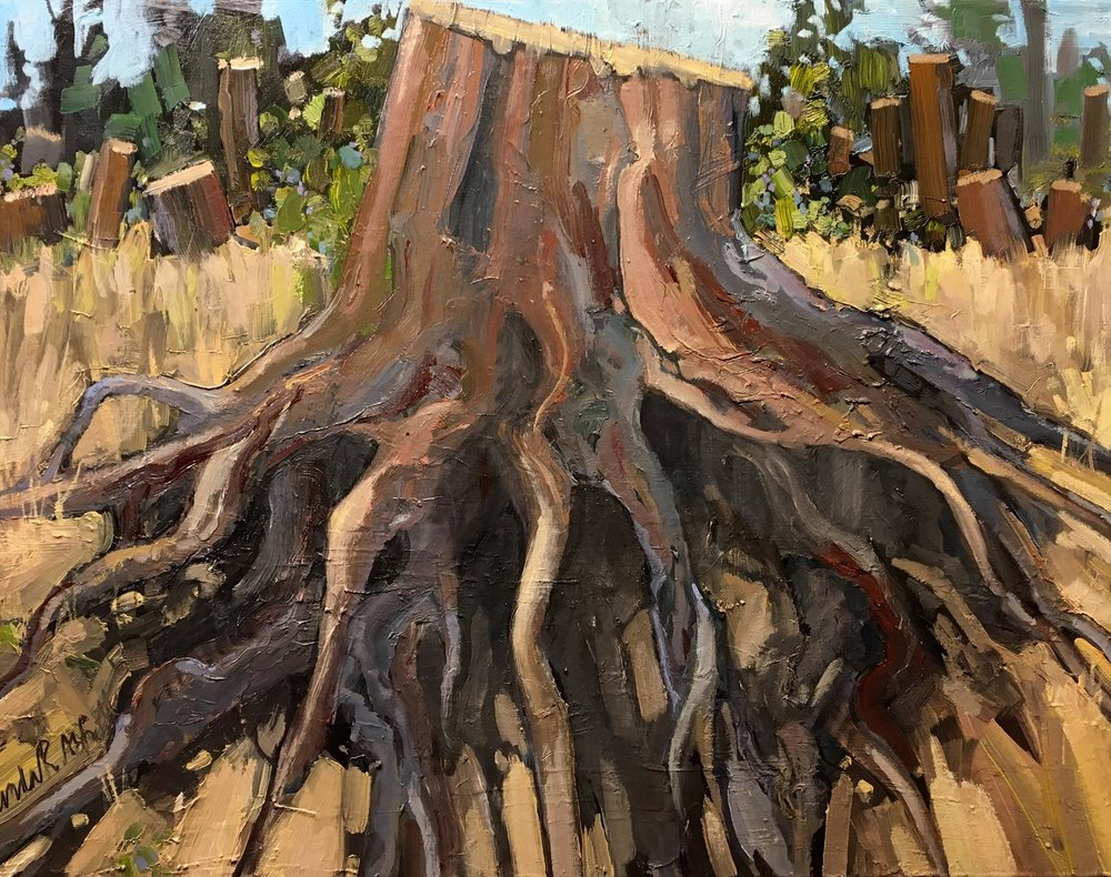 Linda Abbot - Trail of the Mountain Bark Beetle
