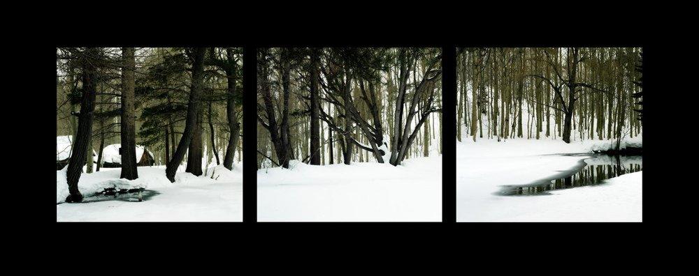 8689-winter_étude-1120201617-15703.jpg
