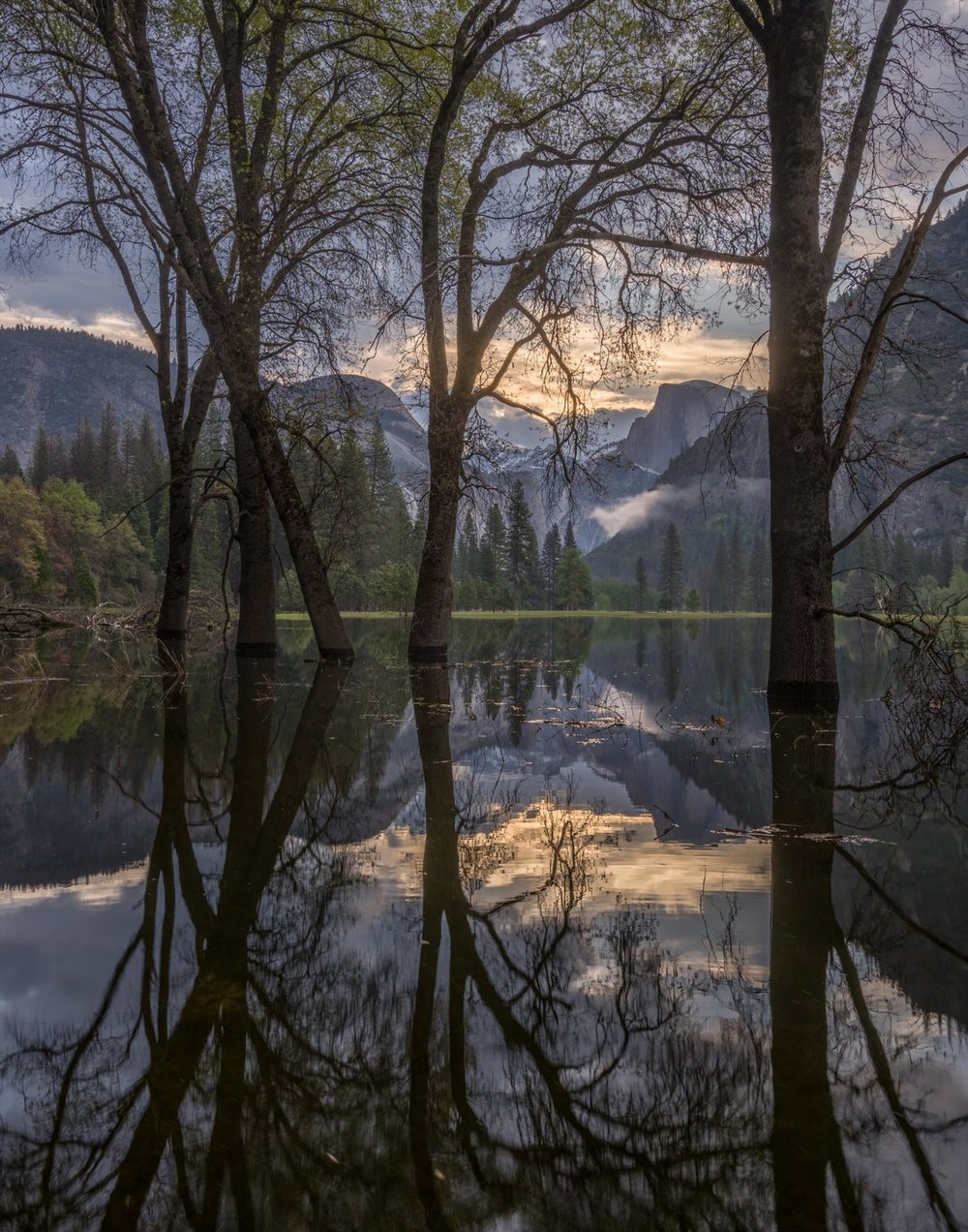 Half Dome & Oaks, Flooded Leidig Meadow, Michael Frye