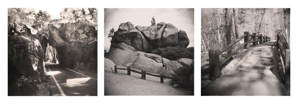 Yosemite with a Toy Camera, Wendy Denton