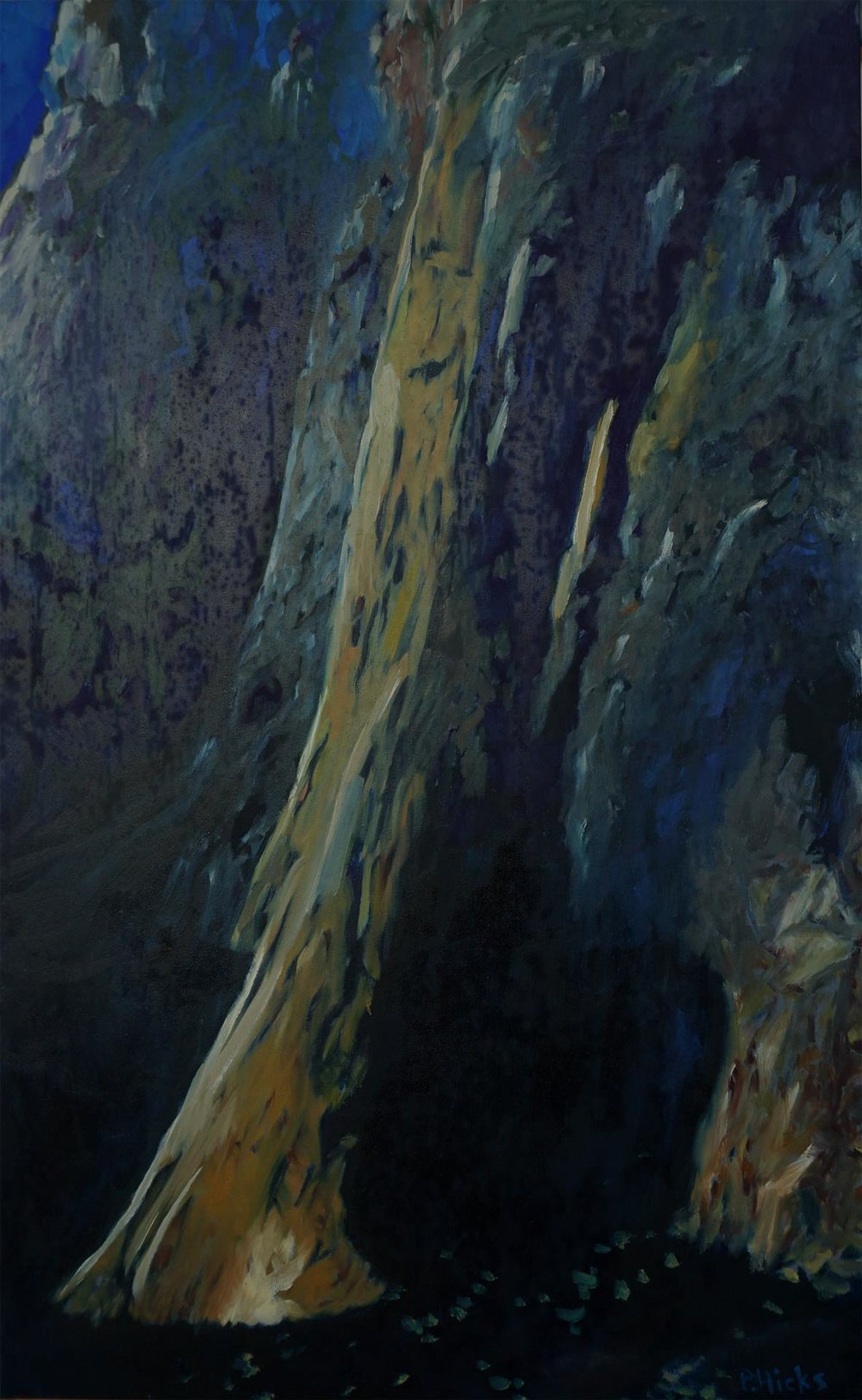 The Awe of El Cap, Pamela Hicks